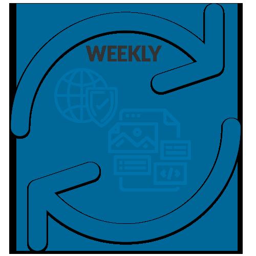 Pro WordPress weekly update and backup service